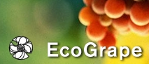 EcoGrape  – Sustainability